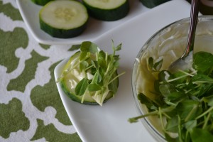 Food Matters Project: Cucumber Wasabi Dip