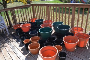 empty pots