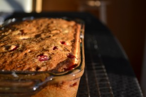 cranberry bread in pan